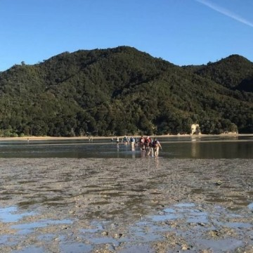 Abel Tasman 6 Day Guided Walk
