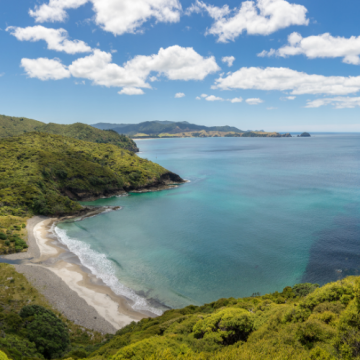 Glorious Great Barrier Island