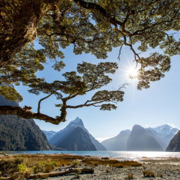 Wondrous Walks of New Zealand