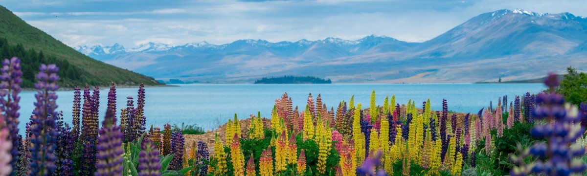 Lake Tekapo Hot Pool Getaway