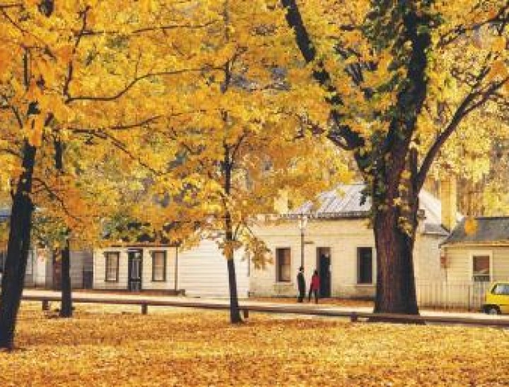 luxury guided tours new zealand Arrowtown